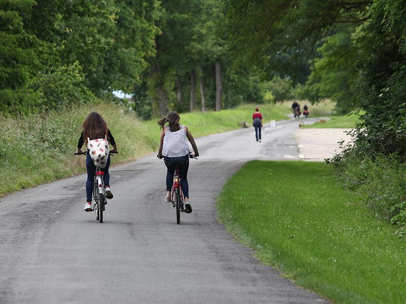 Loire à vélo à la Chaussée Saint-Victor